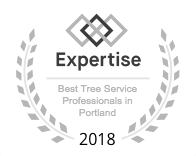 Expertise Best Tree Service Professionals in Portland 2018