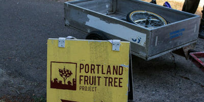 Portland Fruit Tree Project Intern position