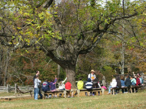 Teaching tree classes outside