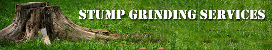 Stump Grinding - Urban Forest Prefessionals - Portland