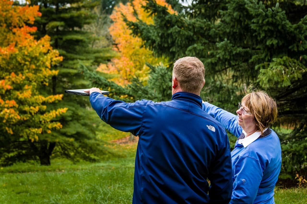 Portland Arborist Consultation