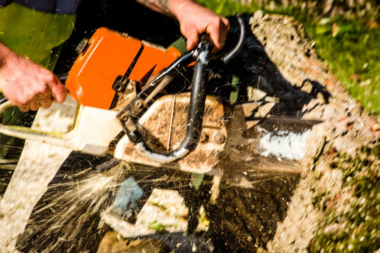 Stump Grinding by Certified Arborists