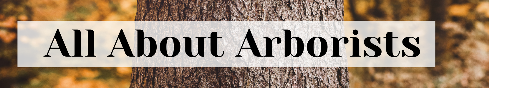 all about arborists urban forest pro