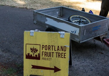 Interested in Trees? Apply for the Portland Fruit Tree Project's 2015 Harvest & Stewardship Intern Position!