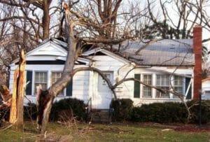 Damaged tree on house