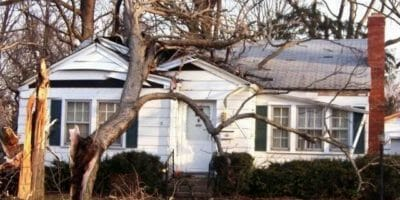 Damaged tree on house